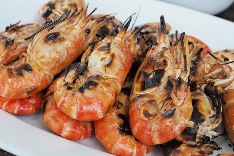 shrimp-karides