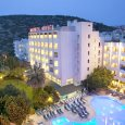 Marbel Hotel Palm Wings By